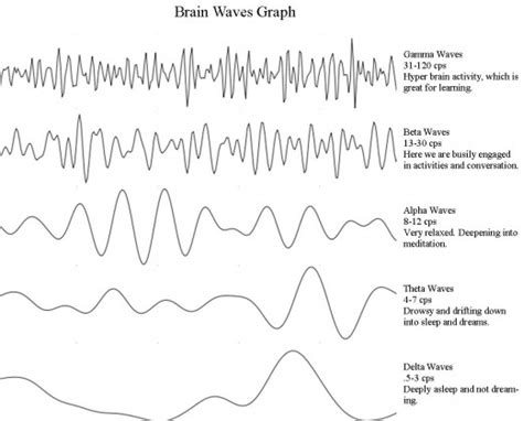 eeg pattern in math what are brain waves theta delta alpha beta brain