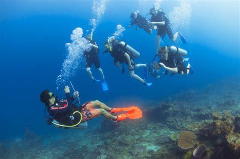 dive master padi dive scuba diving in tarp downbelow adventures
