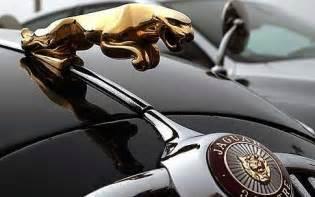 jaguar logo world of cars