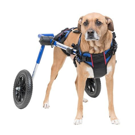 dogs rating wheelchair of 2018 products for handicapped disabled pets supplies or