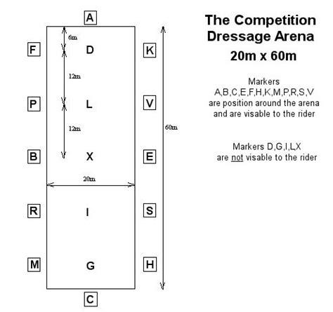 dressage arena diagram ponies information dressage arena 20m x 60m