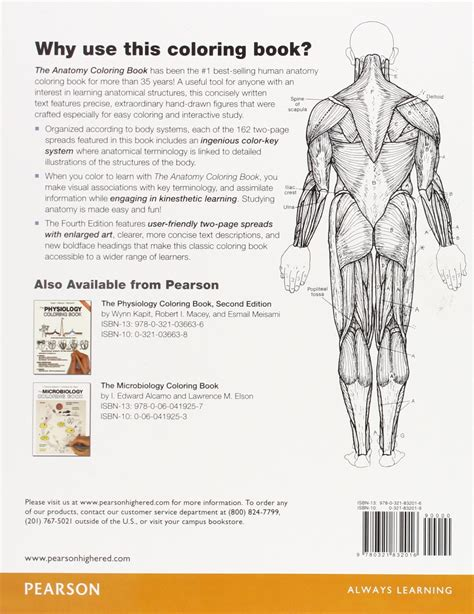 the anatomy coloring book by kapit kapit anatomy coloring book at coloring book