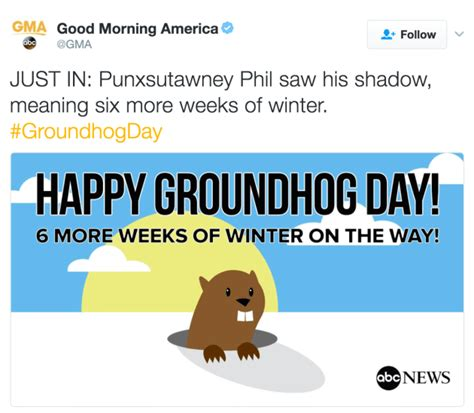 groundhog day moment meaning groundhog day 2017 prediction shadow winter to continue