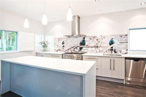 contemporary glass splashback kitchen kitchens kitchen tui bird printed image on glass kitchen splashback