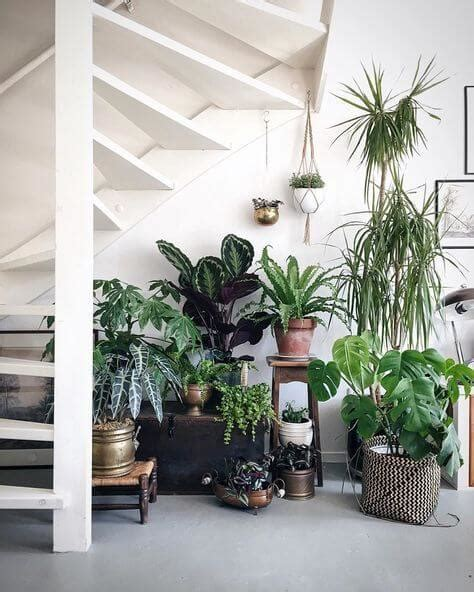 8 ways to bring plants inside this winter fieldstone homes
