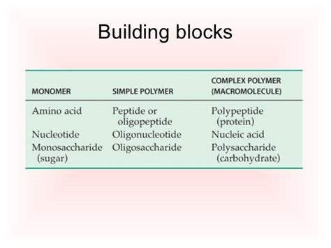carbohydrates building blocks macromolecules carbohydrates