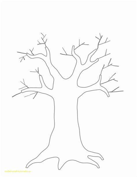 Top Result Plain Family Tree Template Unique Letter Template Enclosure Archives Pixyte Co New Tree Letter Template