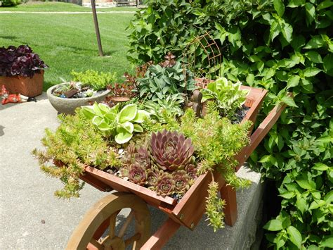 backyard gardens pinterest fairy garden garden ideas pinterest