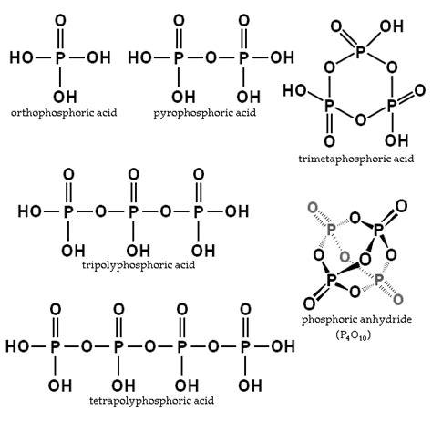 ester fosforico phosphoric acids and phosphates