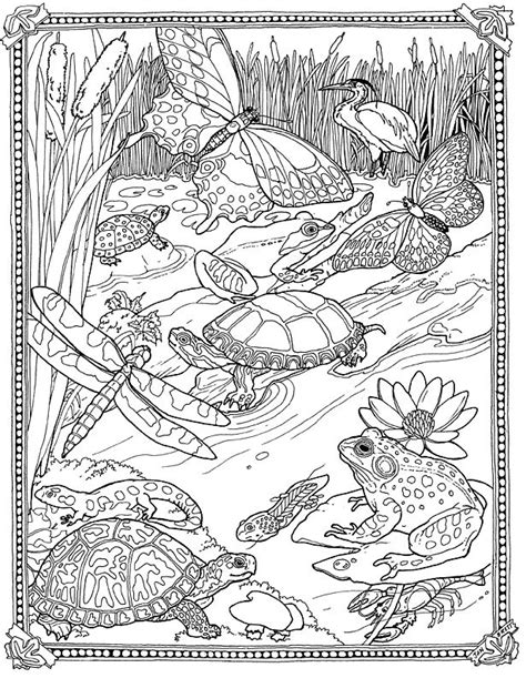 10 best images about coloring pages detailed big kids