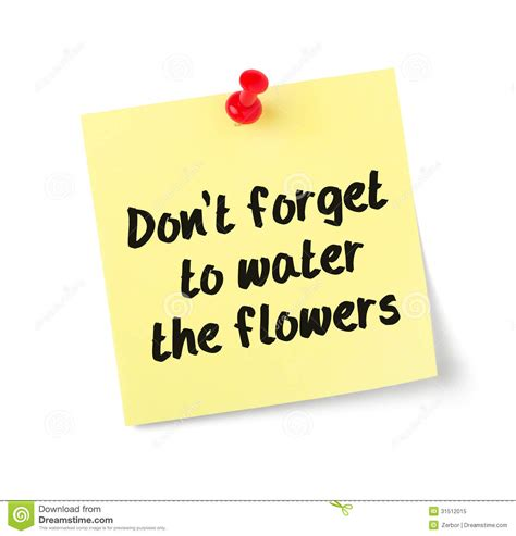Dont Forget The Detox by Dont Forget To Water The Flowers Stock Image Image 31512015