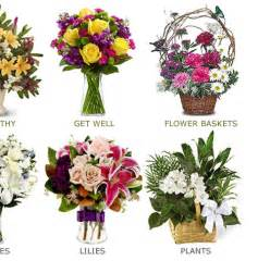 the order of the plants best flowers and gifts