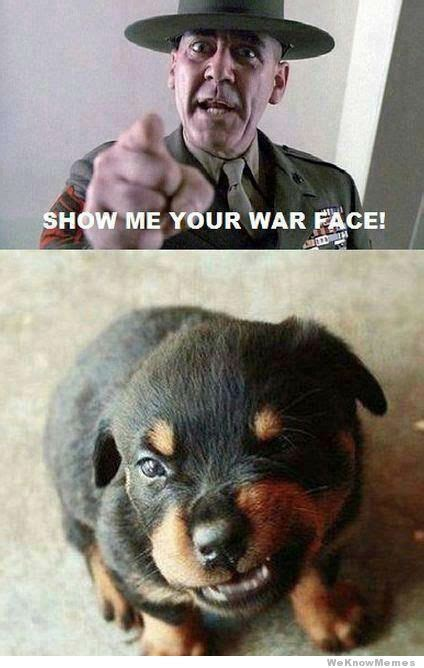 War Face Meme - show me your war face weknowmemes