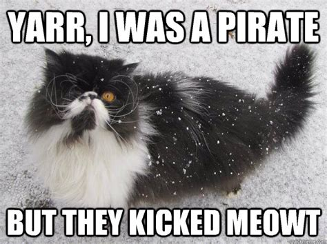Meme The Cat - best of the pirate cat meme 18 pics pleated jeans