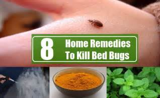 how to kill bed bugs without the use of chemicals