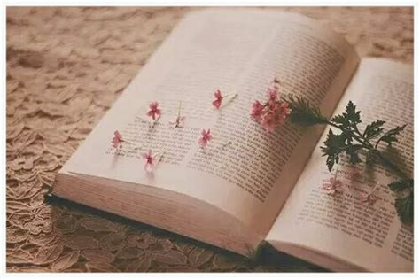 beautiful pictures of books books