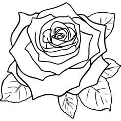 how to draw a flower dr odd i might try this rose