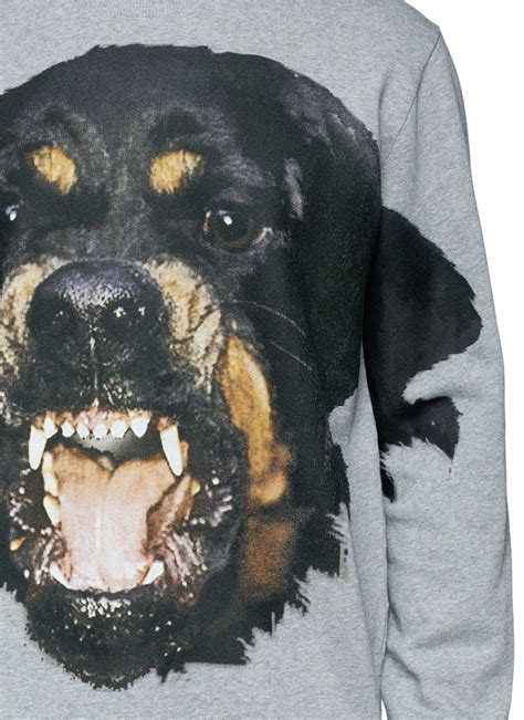 grey rottweiler givenchy rottweiler print sweatshirt in gray for lyst