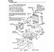 Civic Eg6 92 Hatch  Need A Heater Hose Diagram &amp Have Clutch Pedal