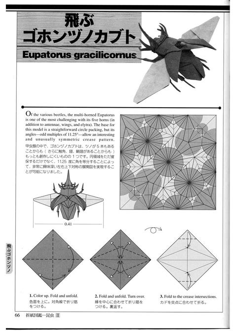 Origami Insects 2 Pdf - insects origami origami insects book schemes of