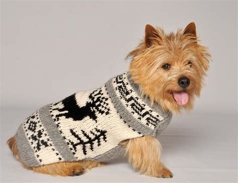sweater for dogs reindeer shawl chilly sweaters