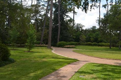 Bayou Bend Collection And Gardens by Bayou Bend Collection And Gardens Picture Of Bayou Bend