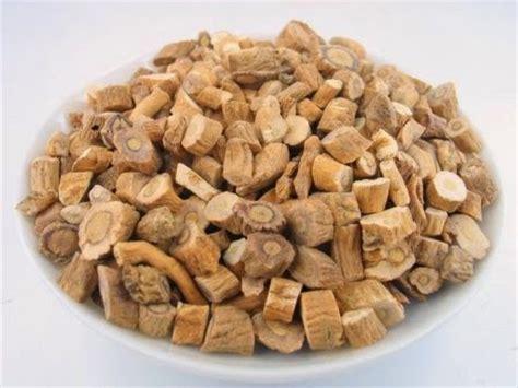 Obat Herbal Cina Untuk Amandel khasiat dan manfaat herbal ban lan tanaman