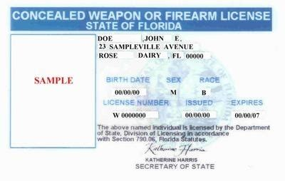 section 790 06 florida statutes concealed weapons training sssfl