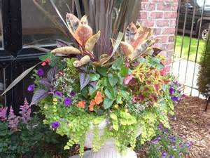 best 257 2017 outdoor planters images on other