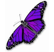 Purple Butterfly Transparent PNG  Mart