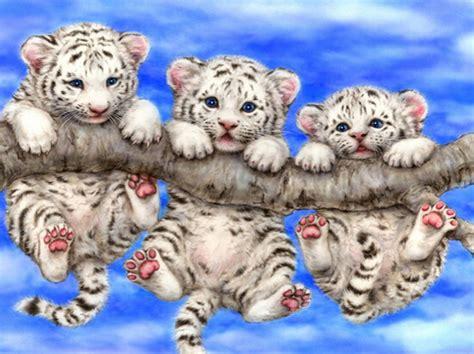 wallpaper anak harimau lucu online kopen wholesale schattige baby tijger uit china
