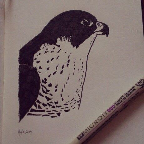 40 best images about falcons nest on pinterest atlanta falcons football wall and blog 40 best images about tekeningen van ayla paul on pinterest