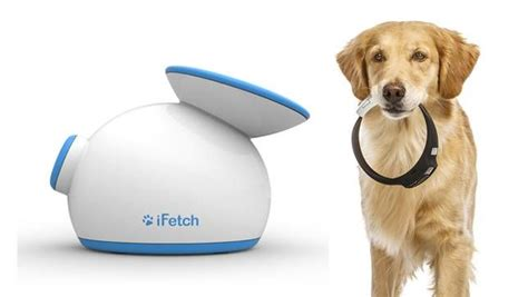 new technology for dogs 10 next gen tech tools for dogs mnn mother nature network