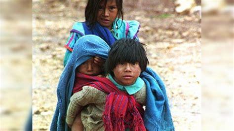 imagenes de niños indigenas la mortalidad entre los ni 241 os ind 237 genas es un 60 m 225 s alta