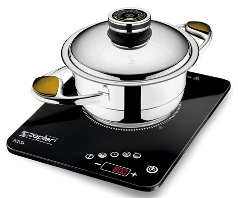 zepter radio induction cooker
