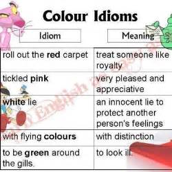 color idioms colour idioms and their meanings slp items pinterest