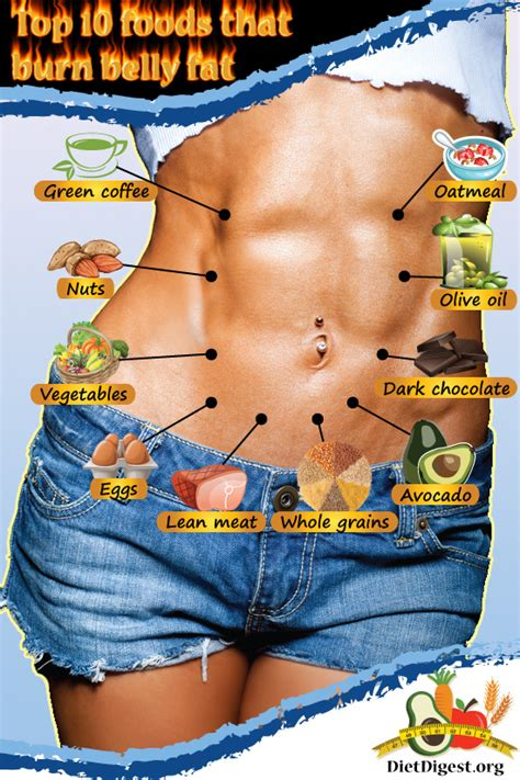 eat your fats mashariaz 7 foods that burn belly