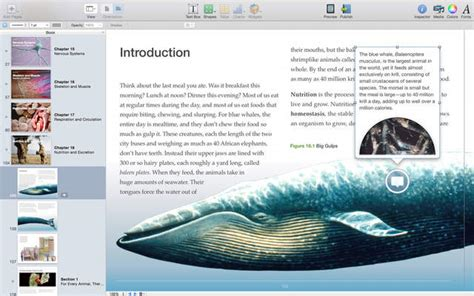 ibooks author templates ibooks author gets new templates improved workflows more
