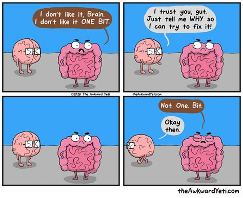 and brain gut instincts an awkward yeti collection gut instincts