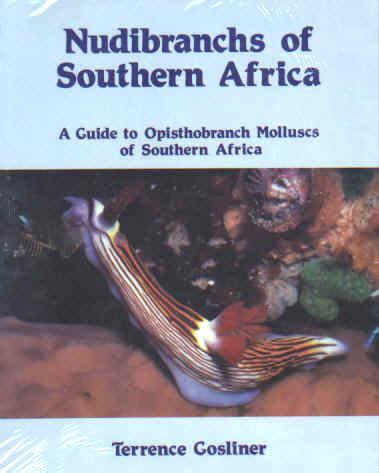 libro southern seas libros opistos
