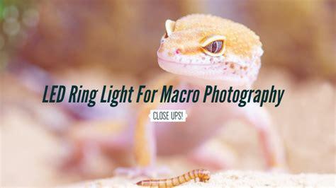 macro lens ring light best led ring light for macro photography canon nikon