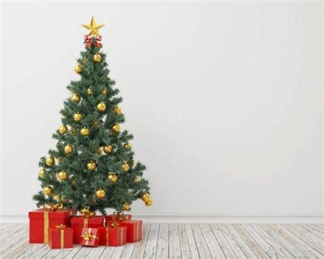 crece la venta de 225 rboles de navidad y resurge el inter 233 s