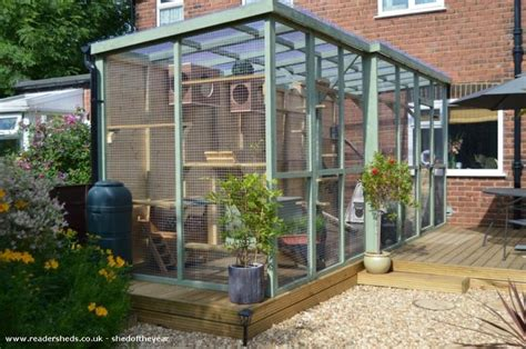 cat patio 1000 images about chicken coops cat enclosures on
