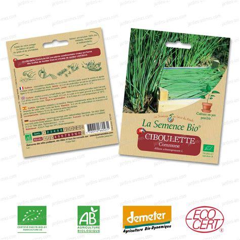 ciboulette commune graine semence bio graines et