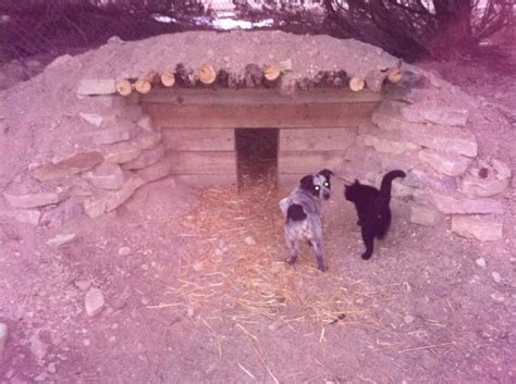 Underground Dog House Underground Living Pinterest