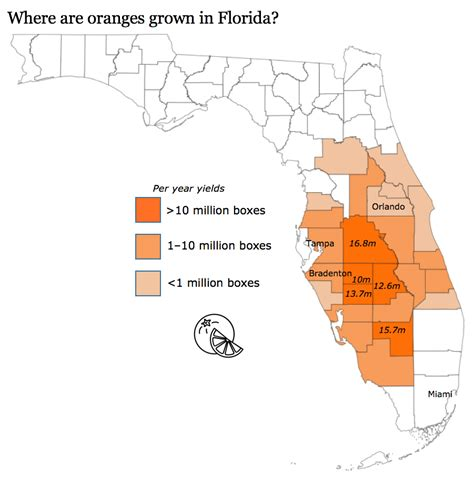 where do oranges grow in florida