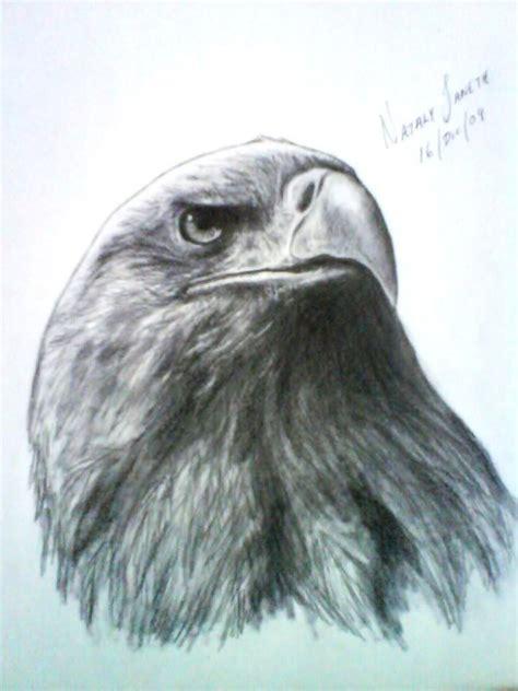imagenes realistas de animales mis retratos a lapiz de actores y otros dibujos de