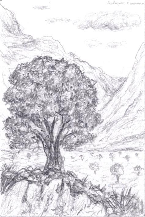 imagenes a lapiz de arboles dibujos a lapiz arboles imagui