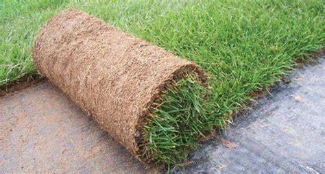 tappeto erboso pronto come arredare un giardino spendendo poco in 5 mosse