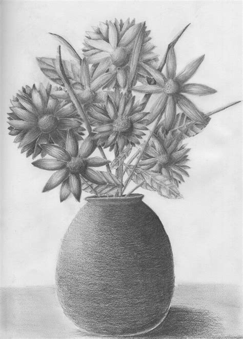 Drawing Of Flowers In Vase by Pencil Holsart